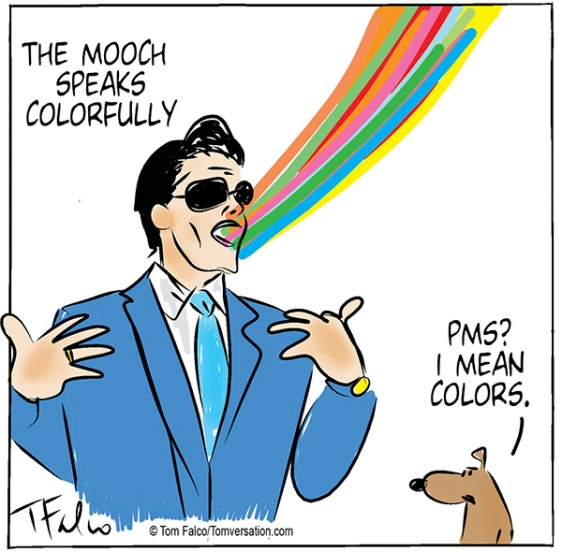 themooch-color-print