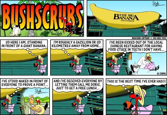 bushscrubs3