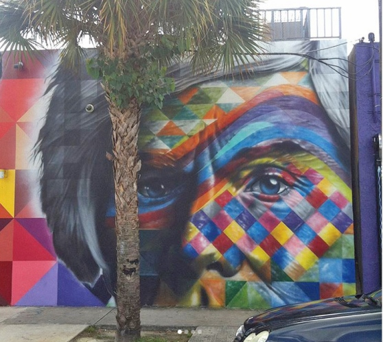 wynwood4